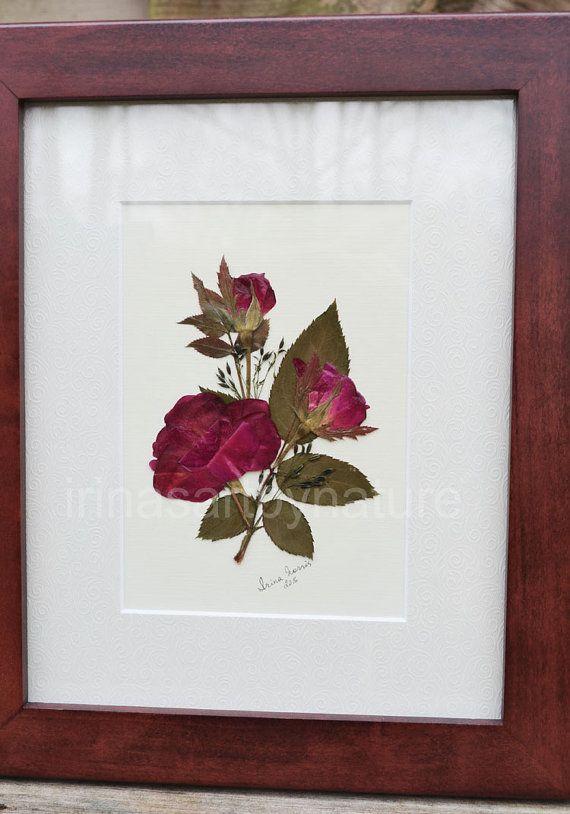 Real Roses Original Pressed Flower Art Floral by IrinasArtByNature