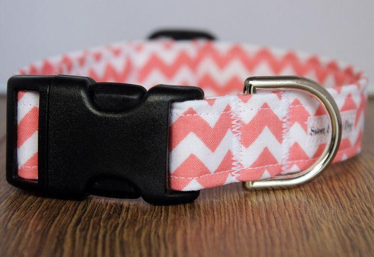 Peach Chevron Dog Collar - Custom Dog Collar - Boy Dog Collar - Girl Dog Collar - Chevron Dog Collar - Adjustable Dog Collar by SweetAndSaltyDog on Etsy https://www.etsy.com/listing/187118993/peach-chevron-dog-collar-custom-dog