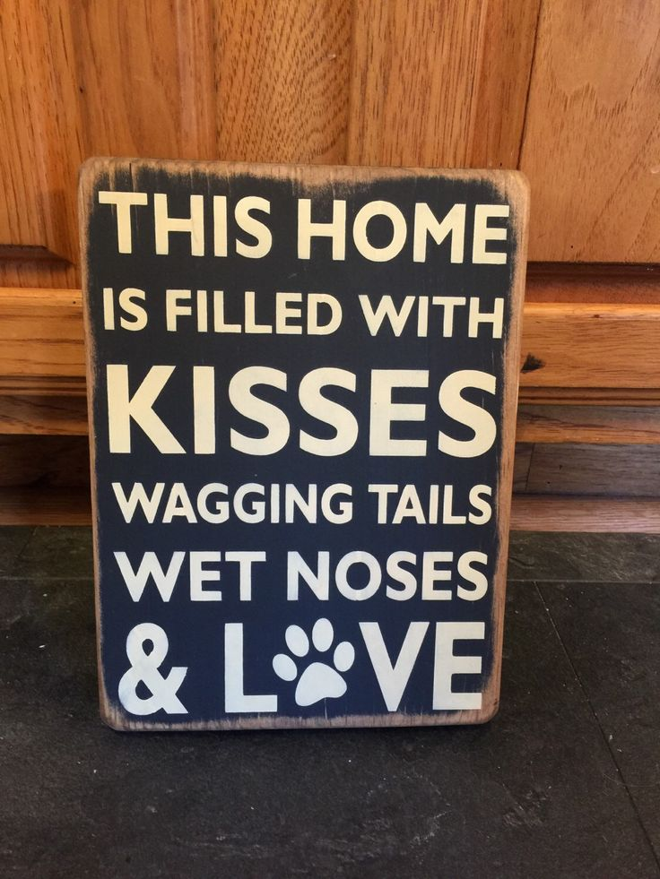 This home is filled with kisses  wagging tails  wet noses   love   CCWD    Pinterest   Walls. This home is filled with kisses  wagging tails  wet noses   love