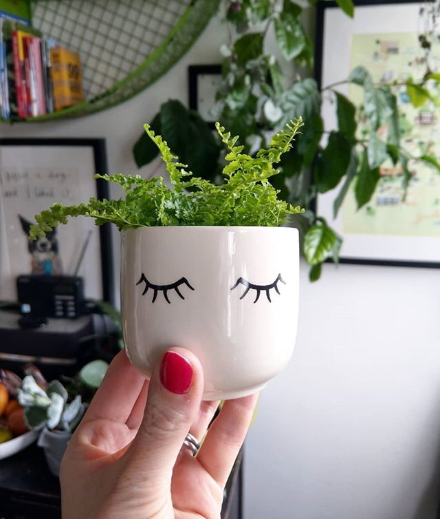 Cute Face Plant Pot The Tired Eyes Mini Plant Pot Is Great Fun To Try Different Plants In Available At Albert Moo Mini Plant Pots Plant Pot Diy Mini Plants