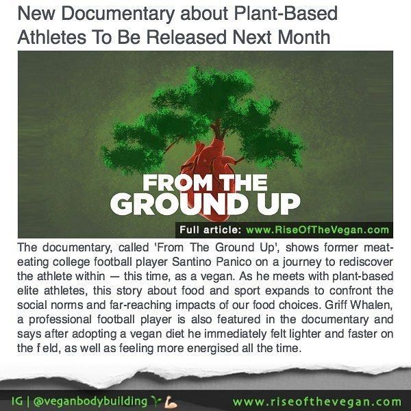 An exciting new documentary will be released next month featuring a wide array of plant-powered athletes who are leaving animal products behind whilst excelling at their sports. _ The documentary called 'From The Ground Up' shows former meat-eating college football player Santino Panico on a journey to rediscover the athlete within  this time as a vegan. As he meets with plant-based elite athletes this story about food and sport expands to confront the social norms and far-reaching impacts…