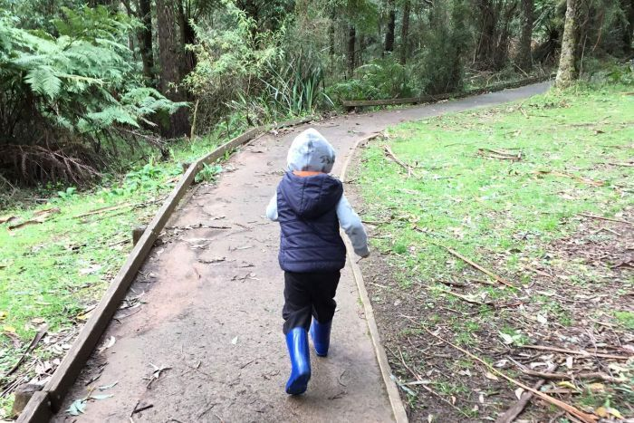 Young child bushwalking
