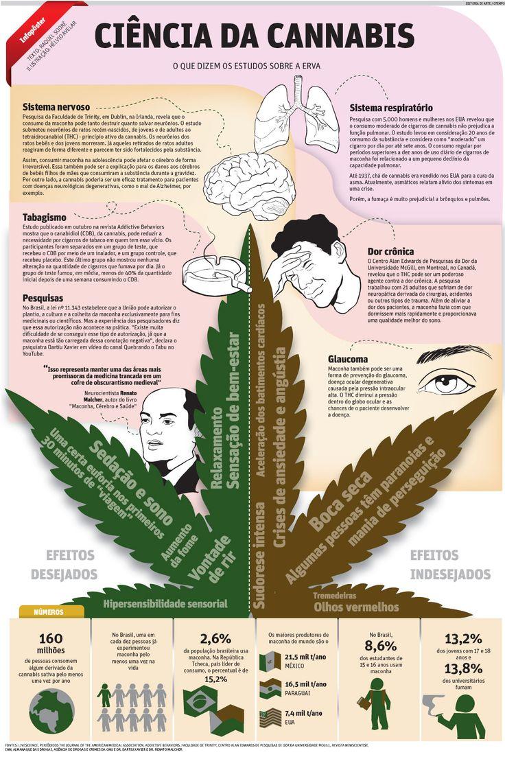 Ciência da Cannabis | JORNAL O TEMPO: http://www.otempo.com.br/infogr%C3%A1ficos/ci%C3%AAncia-da-cannabis-1.747329