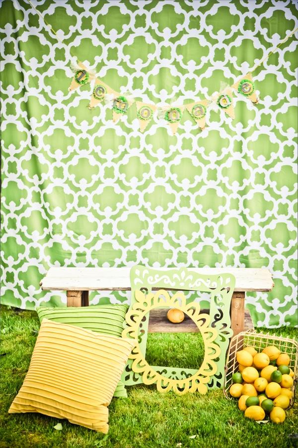 Lemon & Lime photo backdrop  |  heather lynn photographie