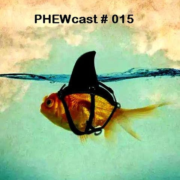 "Check out ""PHEWcast # 015"" by Dj Phew on Mixcloud"