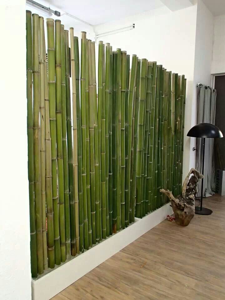 Bamboo Screen In The Office Of Architects Spada Lusenti Usmate Velate Italy In 2020 Zahnartzpraxis Design Bambusgitter Bambus