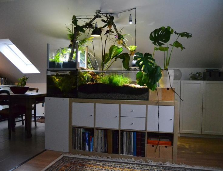 Aquarium Unterschrank Ikea : bild in voller gr e anzeigen aquatica terrarium diy indoor reef aquarium ~ Watch28wear.com Haus und Dekorationen