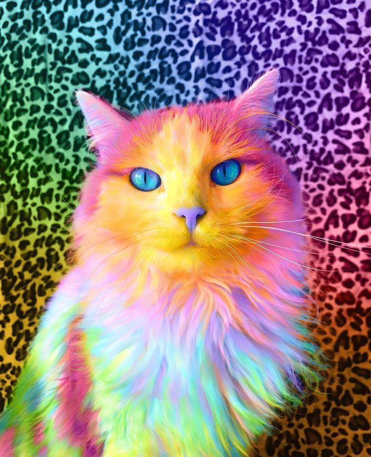 картинки с разноцветными животными вишня блондинистыми волосами
