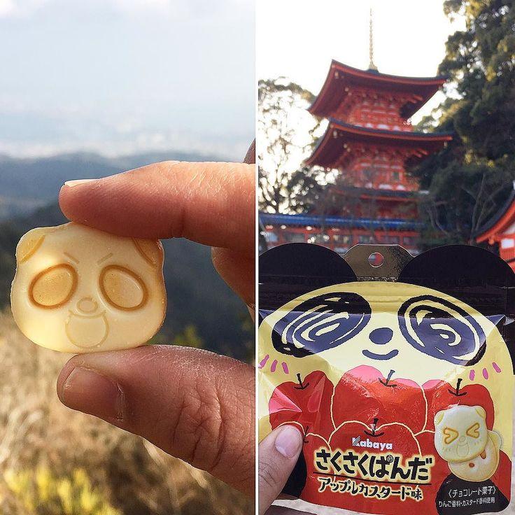 SakuSaku  Panda   Apple  Custard Se avecina el 20 aniversario del Sakusaku Panda y trae al mercado un producto de edición limitada!  Con sabor a tarta de manzana solo puedes probarlo con esta caja!  CAJA de Febrero inscripciones abiertas!  www.boxfromjapan.com  #boxfromjapan #bfjfebrero #sakusakupanda