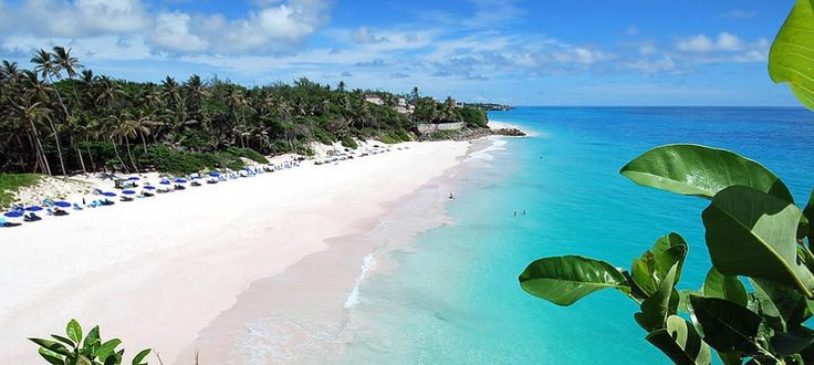 Friday is the best day to book cheap flight tickets to Barbados From compareandfly travel portal. http://goo.gl/sKUBvw