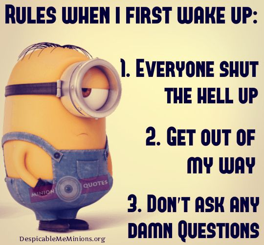 The Morning Funnys: Rules When I First Wake Up