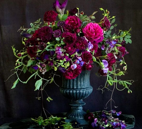 Florali, Jewel toned floral arrangement wiith burgundy, purple and hot pink flowers