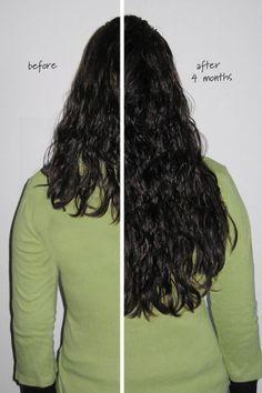 """Grow Fast Shampoo - Long Hair Shampoo, Longer Hair Shampoo, Fast Grow Shampoo"