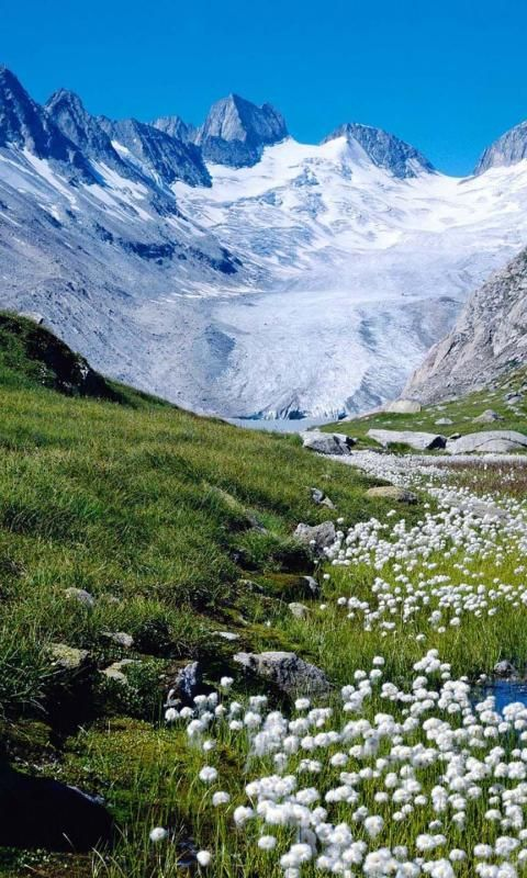 Switzerland Alps. The Alps: one of the great mtn. range systems of Europe; 750 mi across 8 Alpine countries. They formed over 100s of Ms of years as the African & Eurasian tectonic plates collided