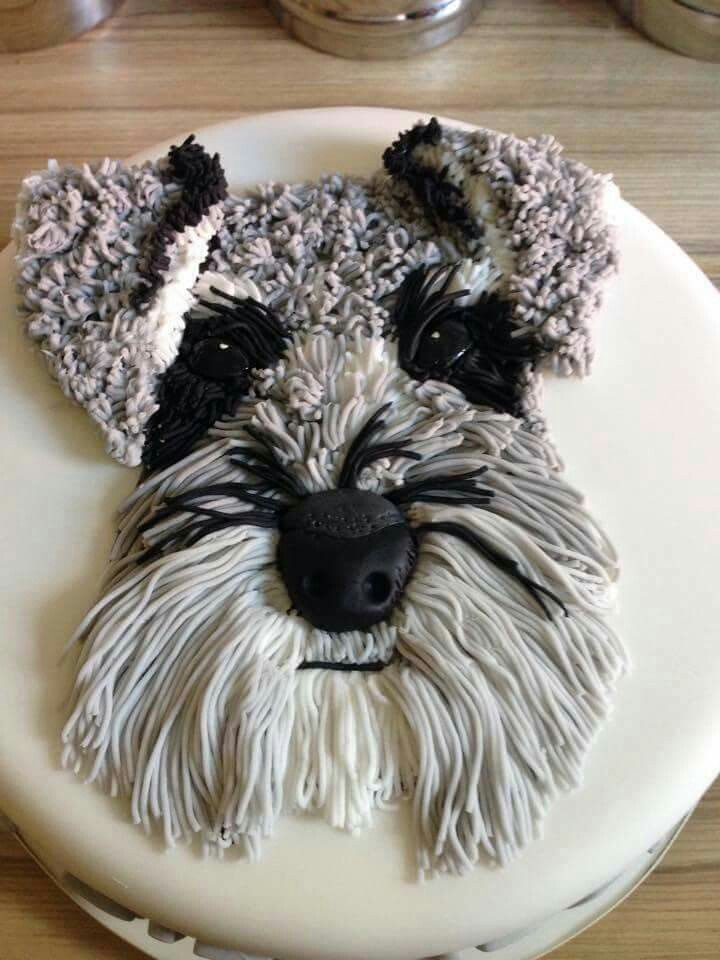 How sweet is this...it's a cake, right?.