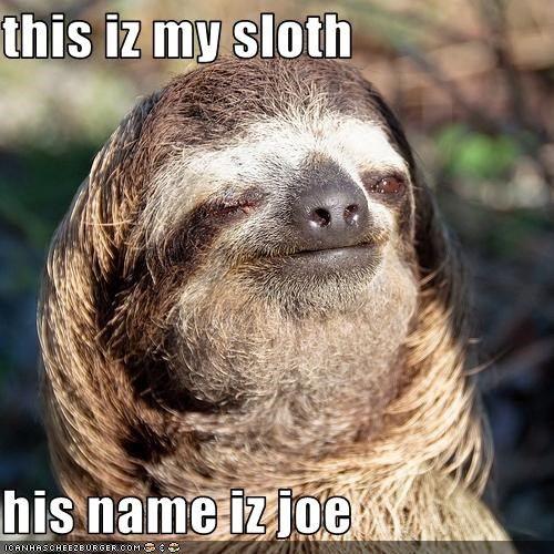 Creepy sloth whisper - photo#32