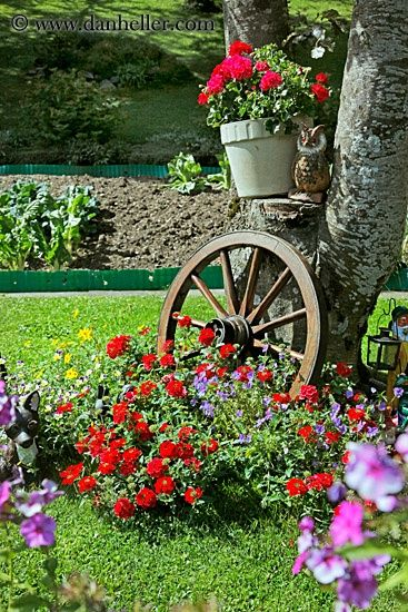 Jazz up the flower bed surrounding a tree w/ rustic accessories (wagon wheel, wheelbarrow, wooden chair), hanging potted plants on the trunk
