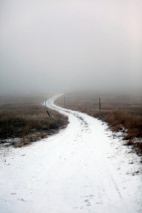 long way: The Roads, Foggy Roads, Snowy Roads, Country Roads, Winter Wonderland, Landscape Photography, Roads Trips, Dirt Roads, Wind Roads