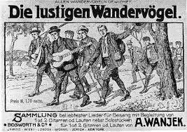 Image result for wandervogel
