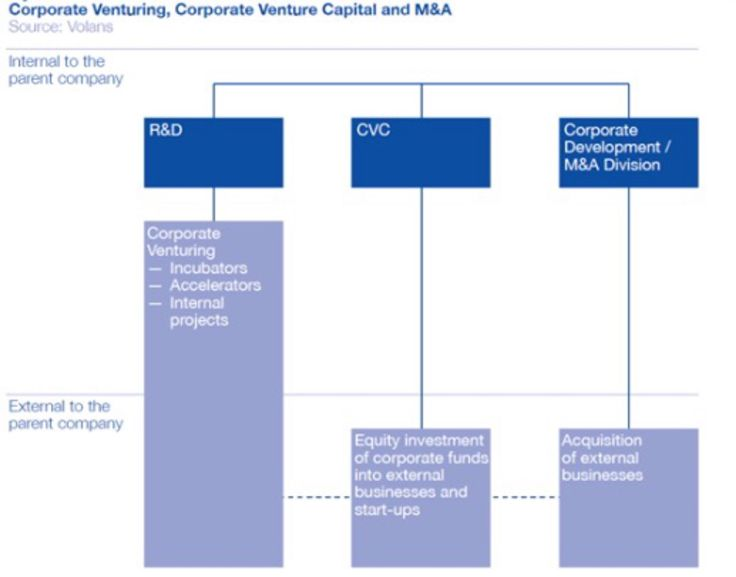 Best Corporate Venture Capital Images On    Anos