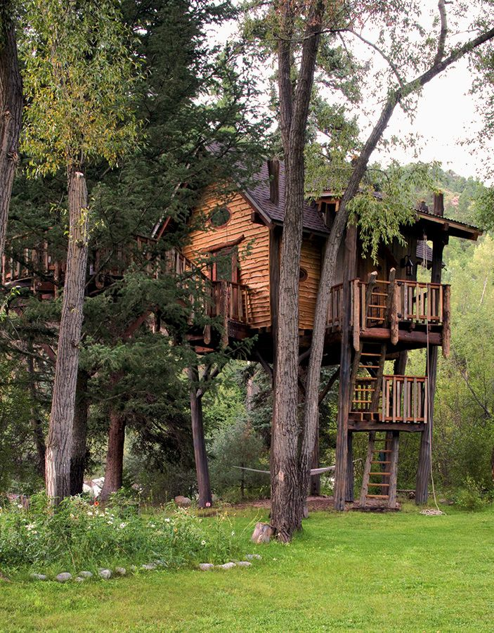 Really Cool Tree Houses 121 best cool tree houses images on pinterest | treehouses