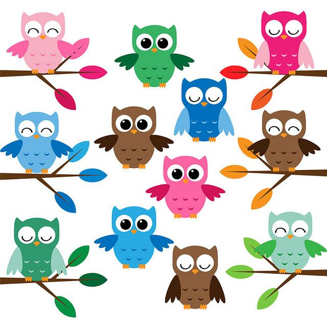 Cute Owls Clip Art Set