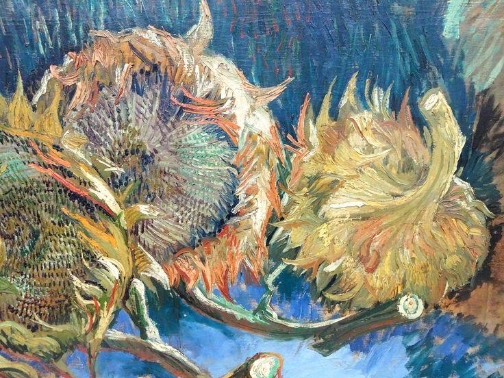 Hoge Veluwe - Museum Kröller-Müller. Vincent van Gogh (1853/1890) - 'Vier uitgebloeide zonnebloemen' (detail) - aug/okt 1887 - olieverf op doek. Foto: G.J. Koppenaal - 30/8/2017.