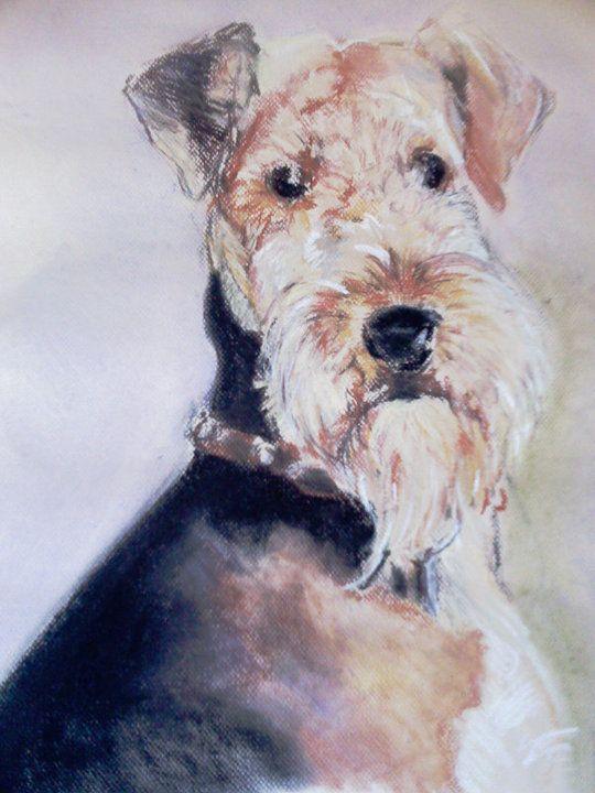 Reuben - a special portrait for a friend
