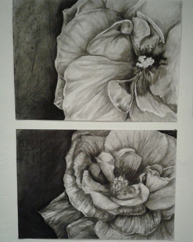 Charcoal Flowers