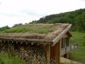 Stages - stage toitures… - Journée… - Un intéressant… - Compte-rendu… - Programme des… - le blog ecorce