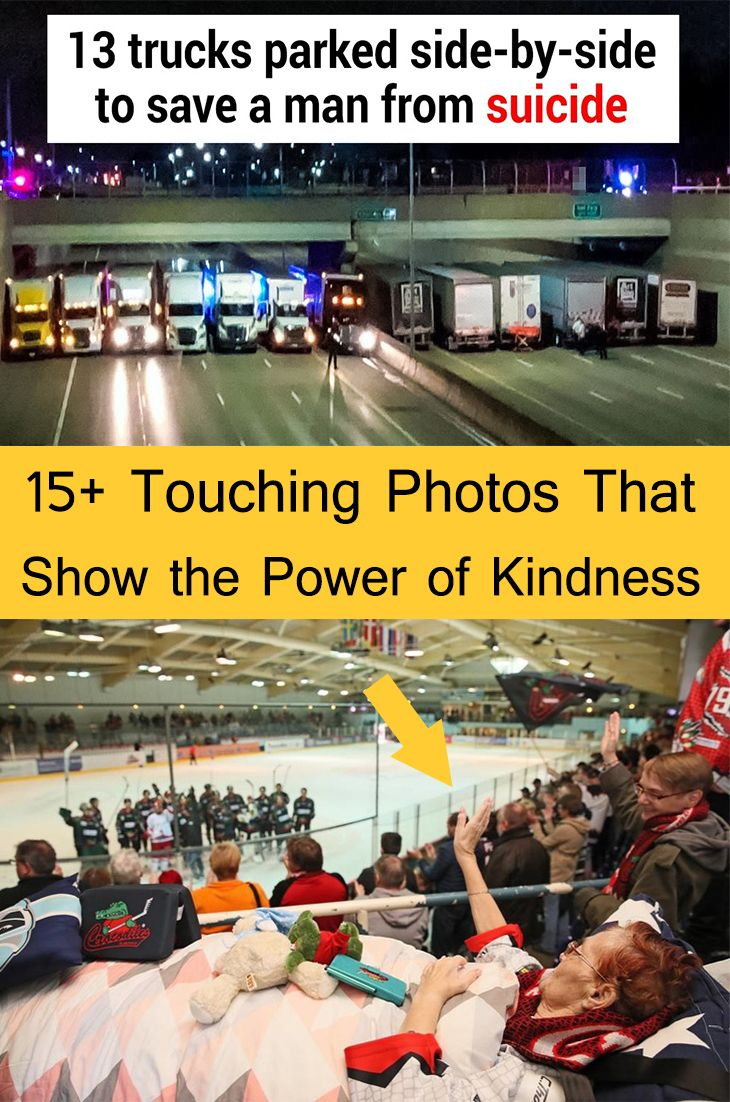 15+ Touching Images That Present the Energy of Kindness