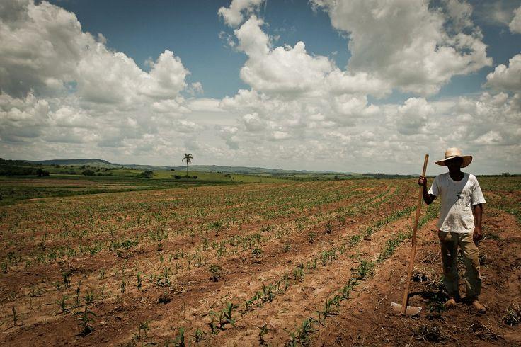 A reforma agrária aconteceu?