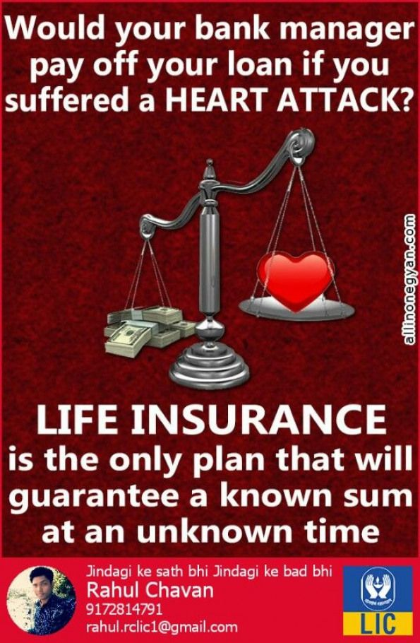 Insurance Insurance Infographic Life Insurance Policy