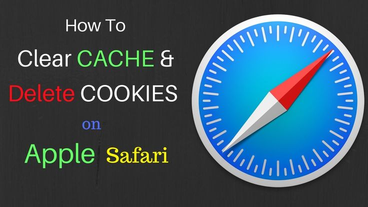 How to Clear Cookies, Cache, Search History on iPhone? Clear