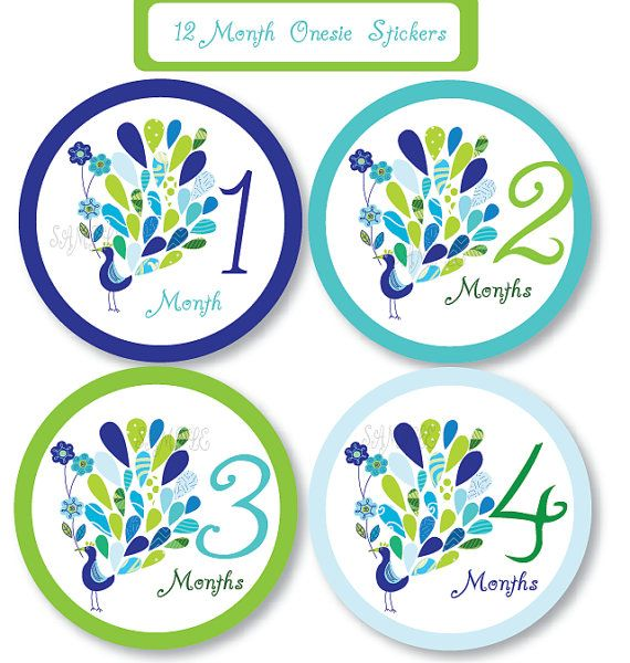 Pretty Peacock Onesie Stickers, Monthly Stickers, Baby Shower Gift, Baby Stickers, Professionally Printed on Etsy, $9.00