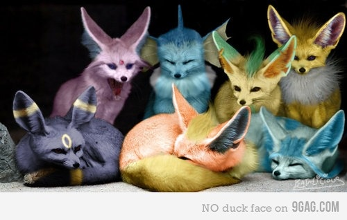 Real life pokemon ! Awww i want one :)