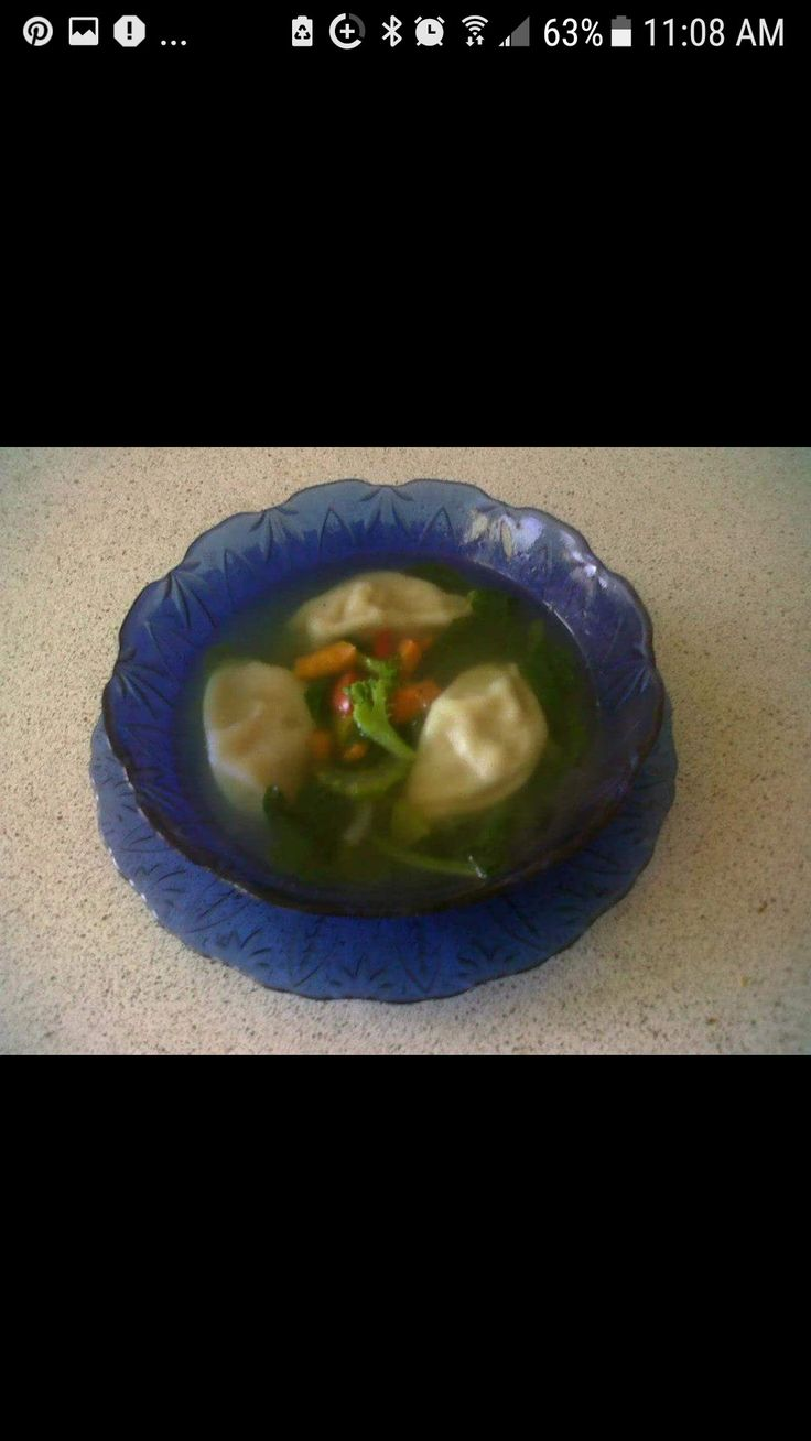 Homemade Fresh Veggie & Chicken Dumpling Soup