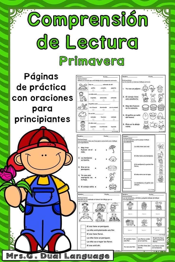 Spanish Spring Sentences to check for Comprehension