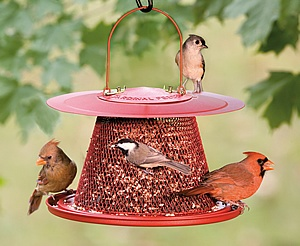 Collapsible wire mesh bird feeder for the home for Mesh feeder ideas