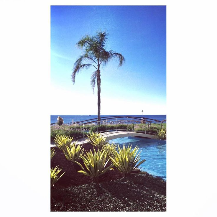 🌴☀️💦😌 @elysiumrhodes #elysiumrhodes #rhodes #greece #ferie #holiday #relax #palmtrees