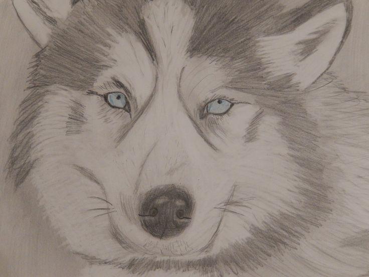 Blue eyes by 8manu on DeviantArt
