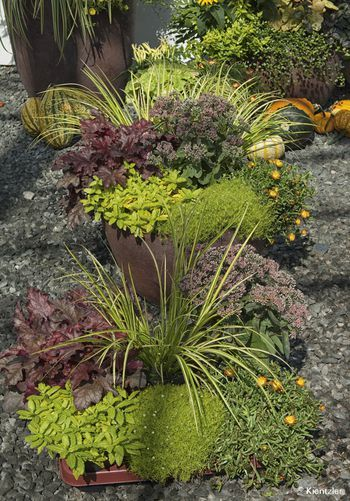 330 besten Garten Bilder auf Pinterest Garten gestalten, Garten - indoor garten anlegen geeignete pflanzen