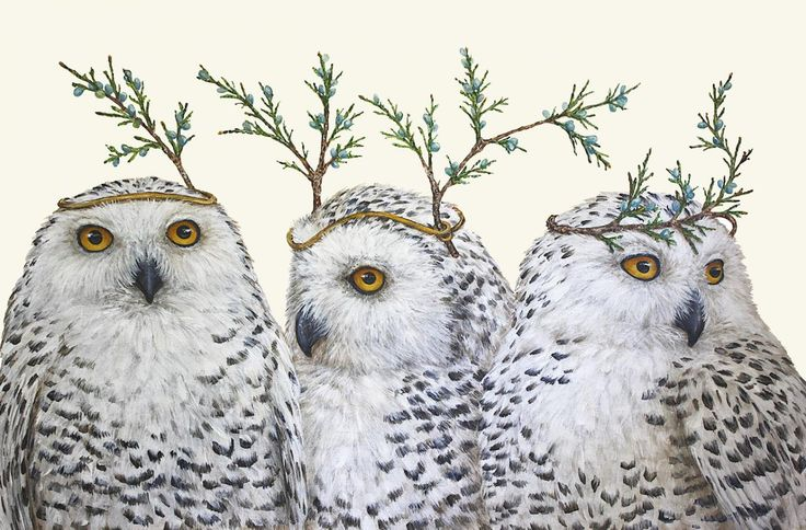 Vicki Sawyer Hester Amp Cook Quot Festive Owls Quot Owls And