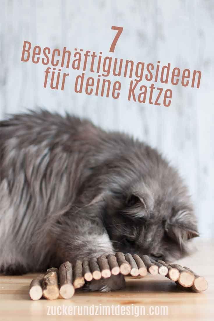 Zweckentfremdet Intelligenzspielzeug Aus Holz Fur Deine Katze Ideal Fur Katzen Trockenfutter Von Almo Nature Mit Bildern Katzen Katze Diy Katzen Spielzeug