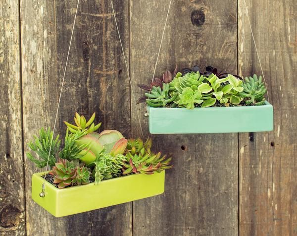 Greatfor a hanging succulent garden, these sleek ceramic, rectangular planters suspendfrom a steel cable. So very mod and so very colorful! Perfect for hangin