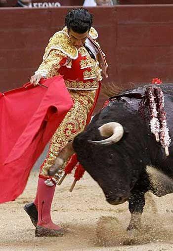 El matador llevaba un TRAJE DE LUCES y mató el toro. En al libro Ana oyó todos las personas en la plaza de toros gritaban y no soportaba más.