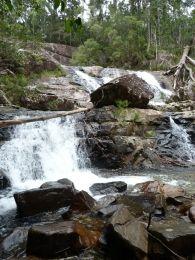 Birthday Creek Falls. Photo: Fiona O'Grady, Queensland Government