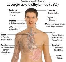 Possible side effects of LSD