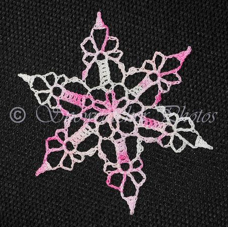 Another beautiful snowflake from snowcatcher.