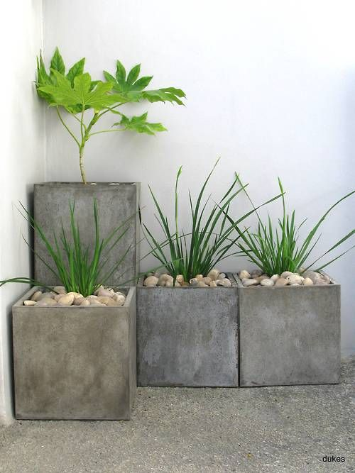 Put living plants/flowers in planters. No need to waste money on plants that could die. Add your color here.